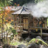 Holistic Nursing Healing Retreat Affected by Climate Change