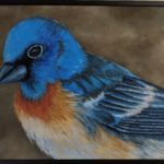 Bluebird by Maureen Zoebelein